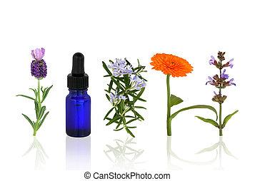 aromatherapy, fiori, erbe