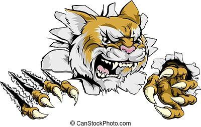 arrabbiato, mascotte, wildcat, sport