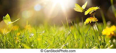 arte, erba, fondo, primavera, estate, fresco, o, astratto