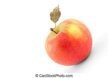 asciutto, saporito, mela