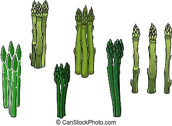 asparago, verde, lance, veggies, carnoso