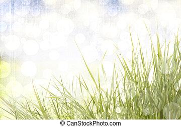 astratto, erba, fondo