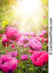 astratto, fondo, estate, floreale
