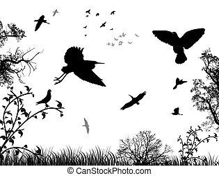 astratto, fondo, natura