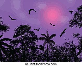 astratto, uccelli, fondo, albero, natura