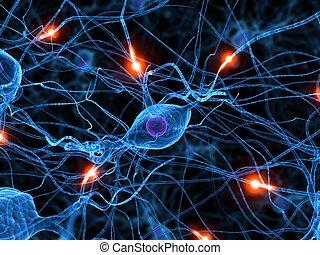 attivo, nervo, cellula