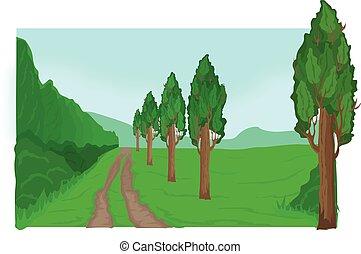 attraverso, foresta, strada