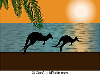 australiano, costa