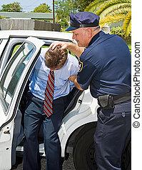 automobile, polizia, shoved