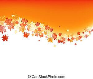 autunno, aceri