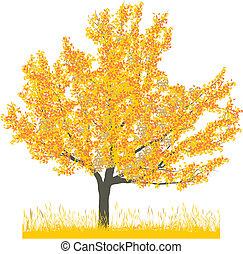 autunno, albero ciliegia