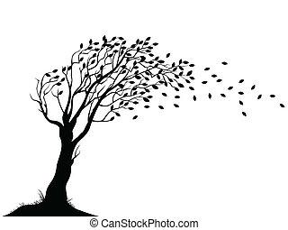 autunno, albero, silhouette