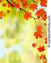 autunno, bordo, foglie, text., tuo