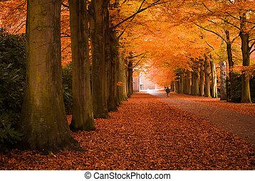 autunno, colori