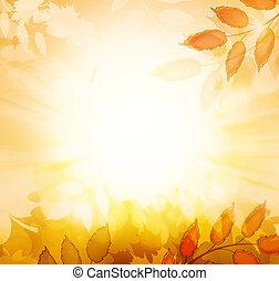 autunno, fondo, cadere