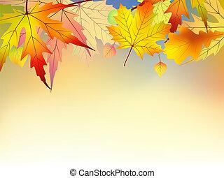 autunno, fondo., foglie, colorito