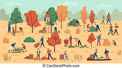 autunno, fondo, raccolta, verdura, lavoro, agricolo, season., berries., piantagione, frutte, coltivatori, impilamento, fieno, vettore, raccogliere