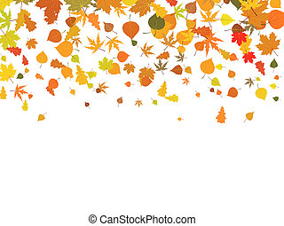 autunno, leaves., fondo