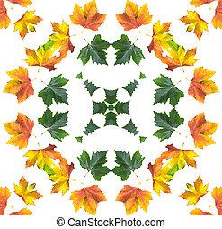 autunno, mandala