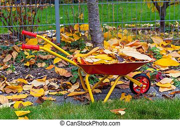 autunno parte, giardino