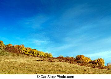 autunno, praterie, interno, mongolia