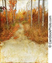 autunno, traccia, segno, scia, legnhe, grunge, fondo
