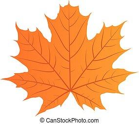 autunno, vettore, foglia