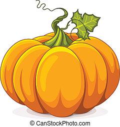 autunno, zucca