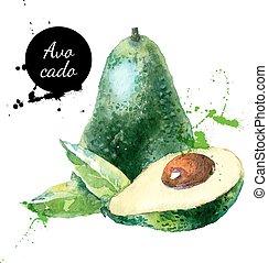 avocado, mano, acquarello, frutta, fondo, disegnato, bianco, pittura