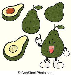 avocado, vettore, set