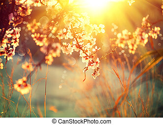 azzurramento, albero, bagliore, scena, natura, sole, bello