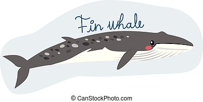 balena, pinna