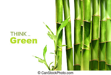 bambù, accatastato, tiri, lato
