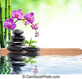 bambù, orchidea, fondo, terme