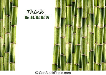 bambù spara