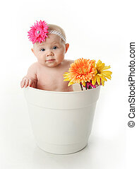 bambino, vaso, ragazza fiore