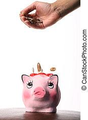 banca moneta, scatola