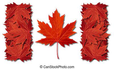 bandiera canada, foglia