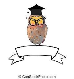 bandiera, laureato, gufo, saggio, berretto, nastro