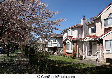bc, vita città, suburbano, vancouver, canada
