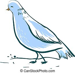 bello, blu, colomba, illustrazione, fondo., vettore, bianco