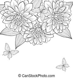 bello, cornice, farfalle, sfondo nero, monocromatico, dalia, fiori bianchi
