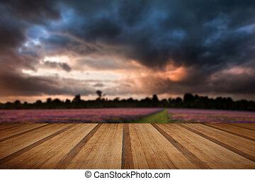 bello, estate, colorito, pavimento, legno, vibrante, sopra, giacimento lavanda, sunest, assi