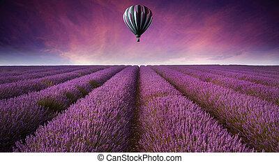 bello, estate, immagine, lavanda, aria, campo, caldo, tramonto, balloon, paesaggio