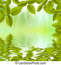 bello, estate, natura, riflesso, acqua, fondo