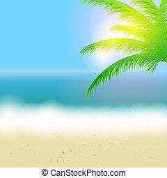 bello, estate, spiaggia, sole, albero, illustrazione, vettore, palma, fondo, mare