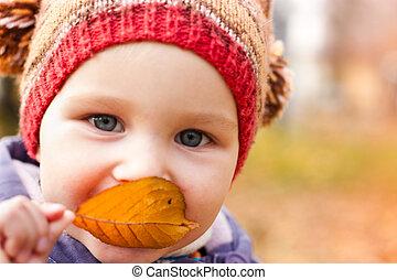 bello, esterno, natura, contro, autunno, bambino, ritratto