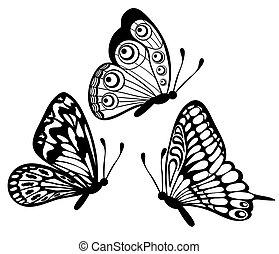 bello, farfalla, set, isolato, nero, bianco