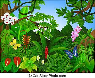bello, foresta tropicale