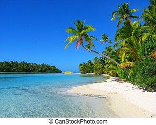 bello, isola, aitutaki, piede, cucini isole, spiaggia